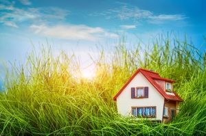 refinance better deal mortgage broker Sutherland Shire home loan broker Bee Finance Savvy finance broker